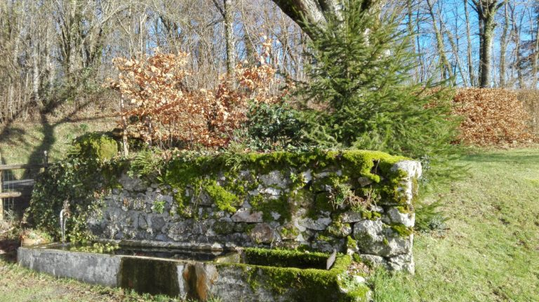 fontaine naturelle